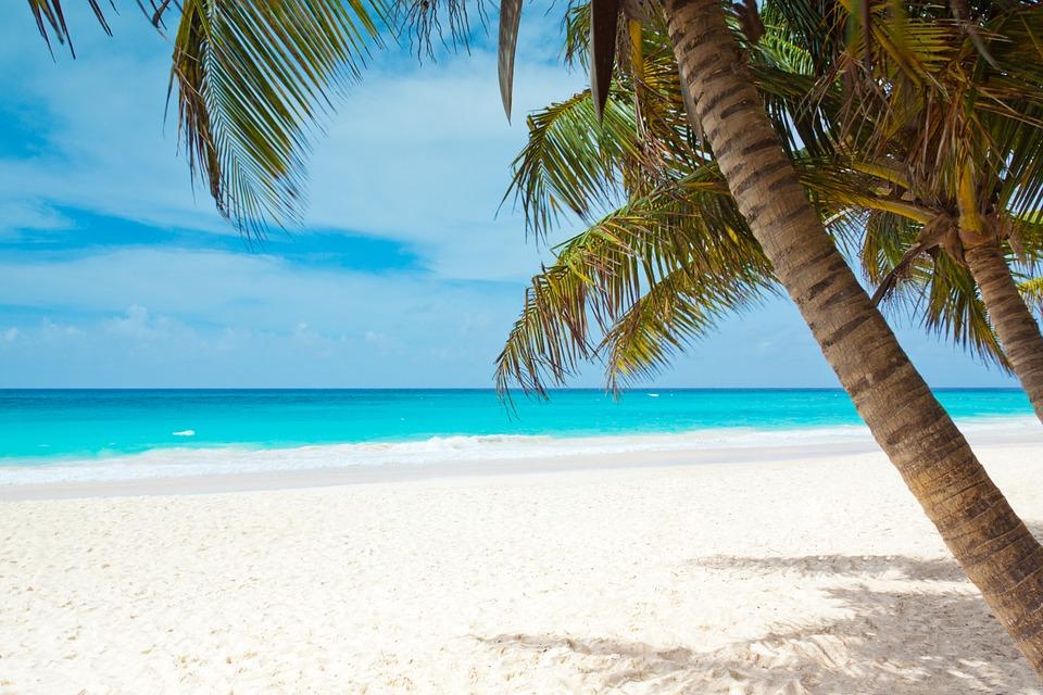 Weißer Strand mit Palmen